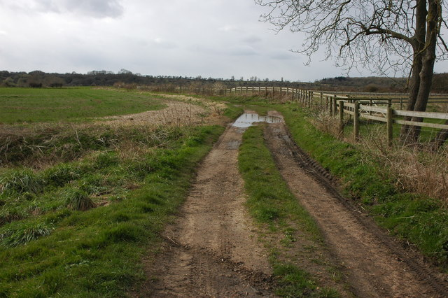 Track to fields to the west of Pensham