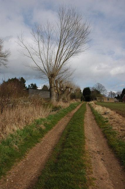 Track at Pensham