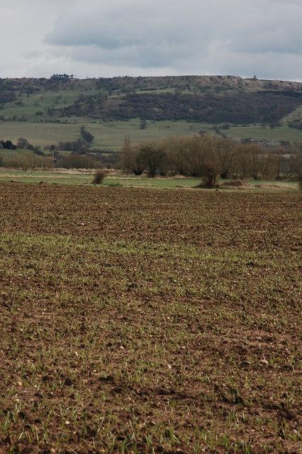 Bredon Hill viewed from Pensham