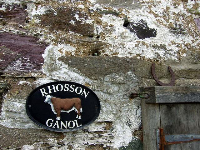 Rhosson Ganol in close-up