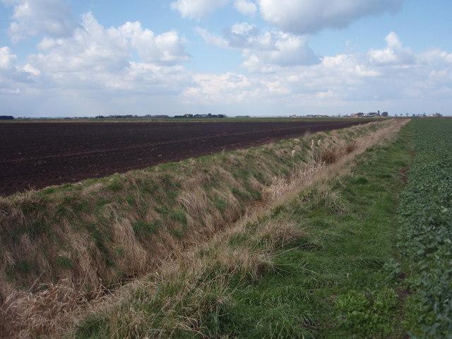Farmland south of Hope Pole