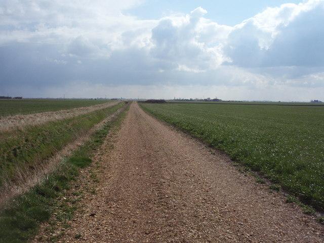 Track south of Halfway Farm