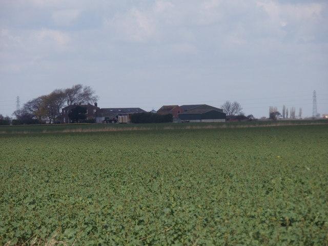 Field near Owen's Farm