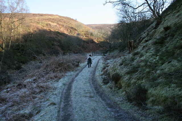 Costy Clough path in frost