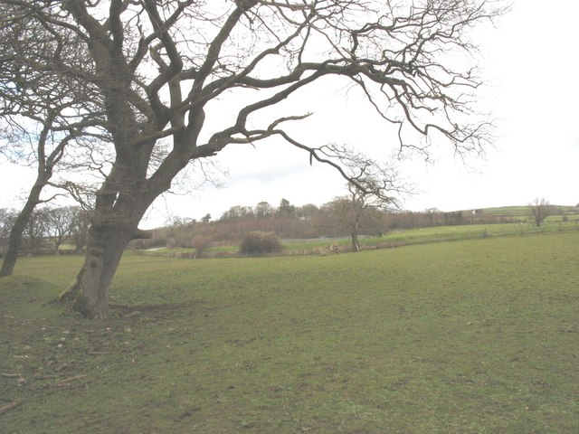 View across fields towards the road from Caerlan Tibot earthworks
