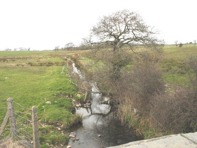 The 'canalised' Afon Cadnant