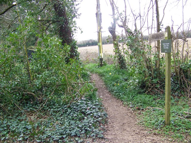 Footpath from Green Lane