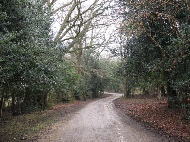 Cott Lane, Burley