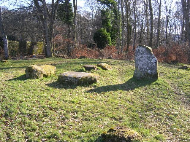 Standing Stones in Cemetery wood