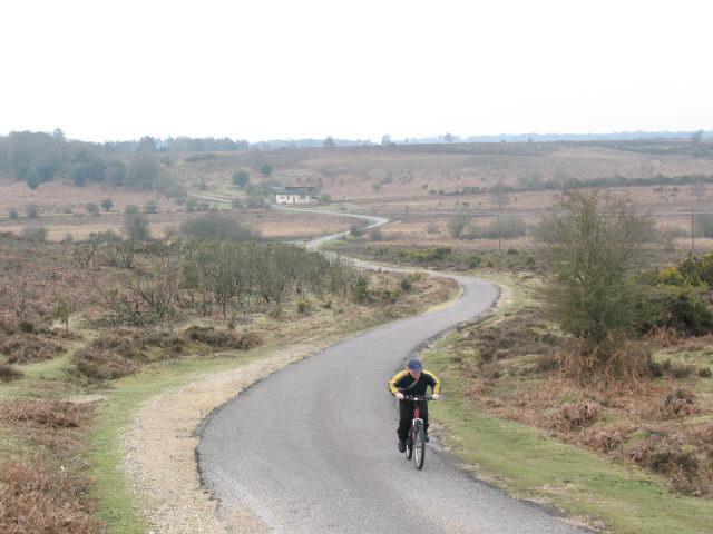Road across Holmsley Bog