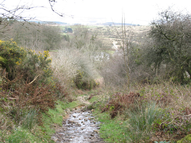 Narrow lane above Bellever