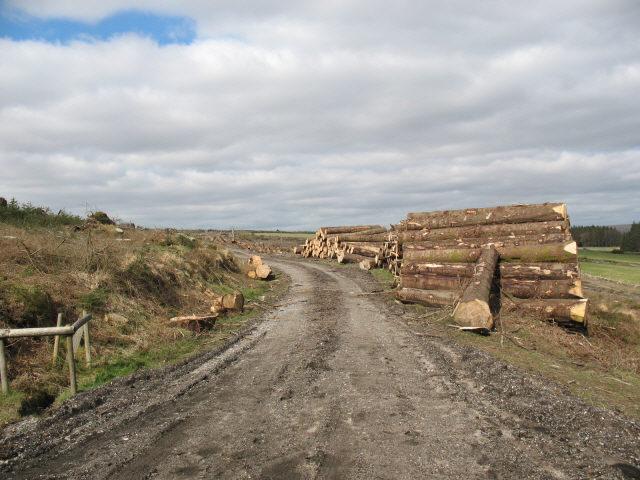 Recent logging operations
