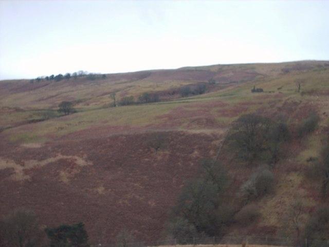 View Towards Allanhead Ruin