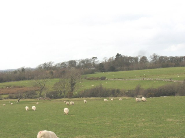 View across the fields of Erw Fawr towards Crug House