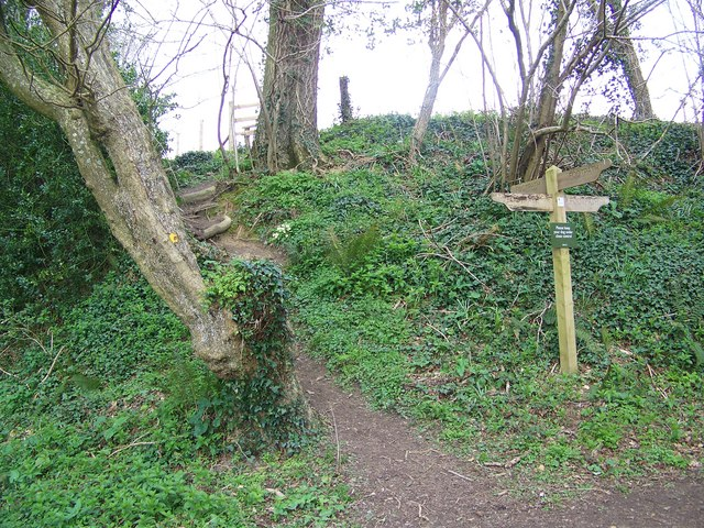 Footpath junction, Sagles Spring