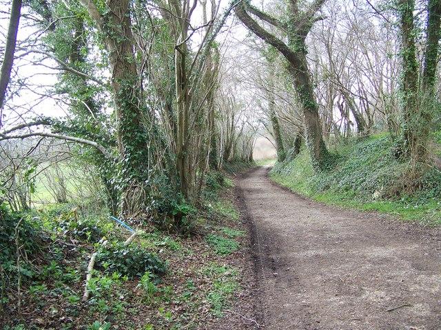 Footpath towards Rockbourne