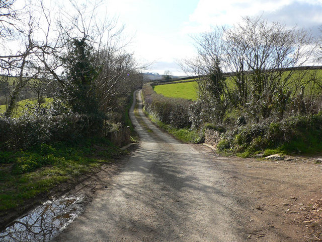Road from Liverton to East Lounston
