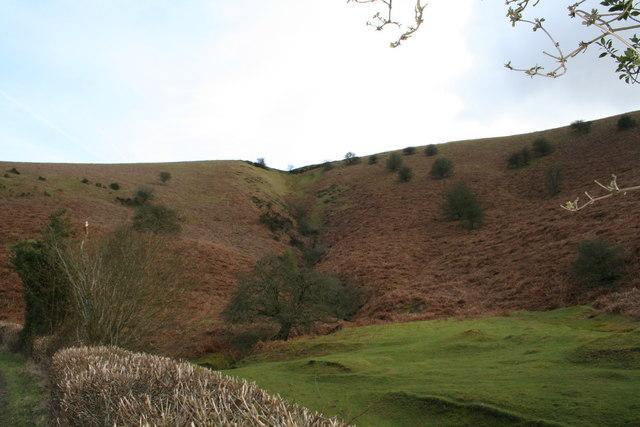 Hillside gulley