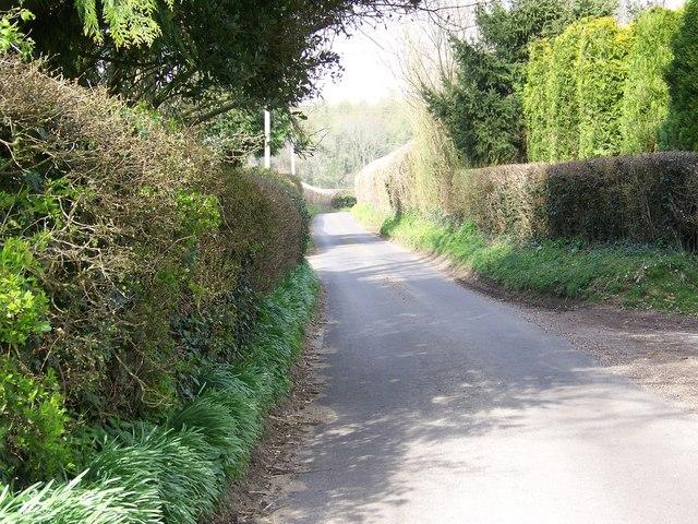 Whip's Hill Lane