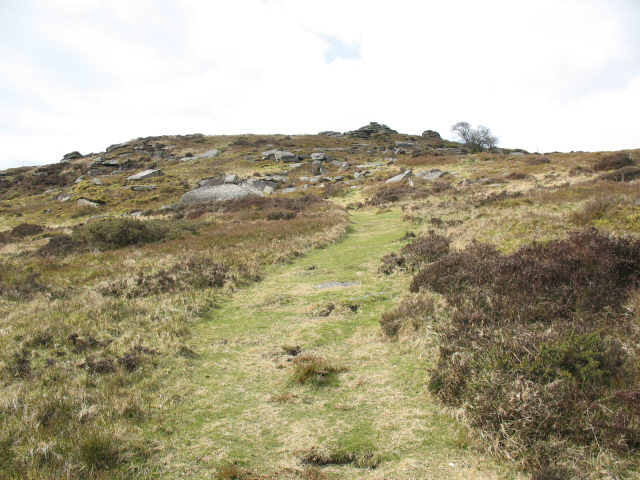 Bellever Tor from the East