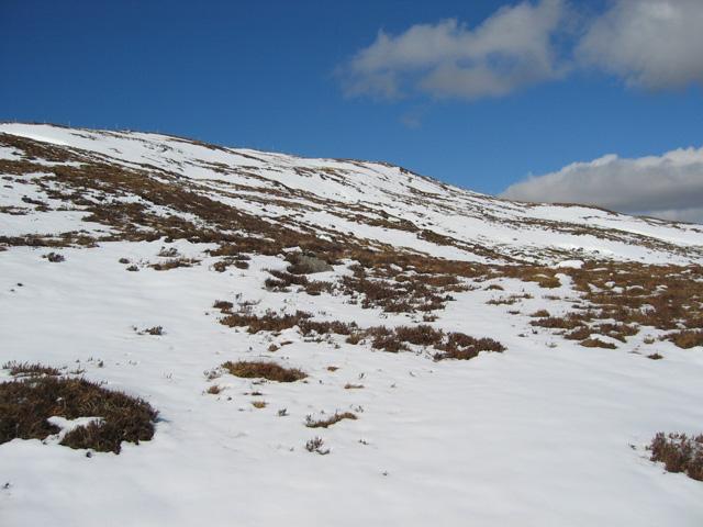 South east slopes of Carn Bad a' Chreamha
