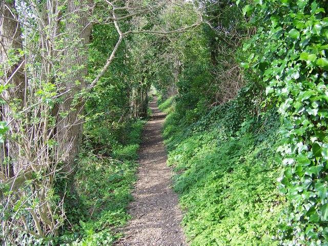 Enclosed footpath, Rockbourne