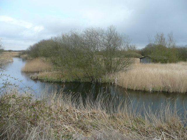 Reedbeds and boathouse