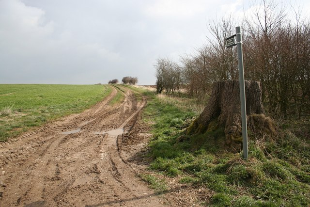 Wolds bridleway