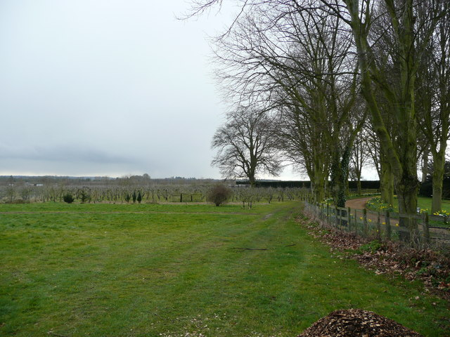 Orchard land at Rushett