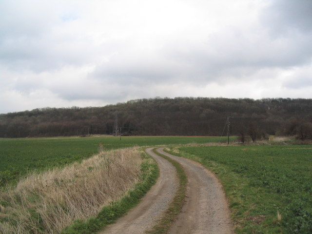 Bridleway to Cottagers Hill