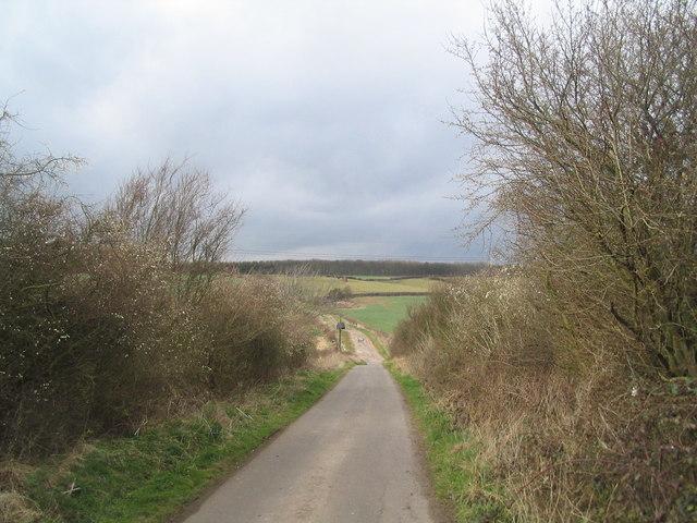 Looking down Wood Lane