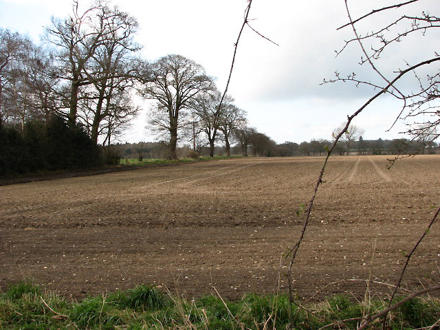 View NW across field