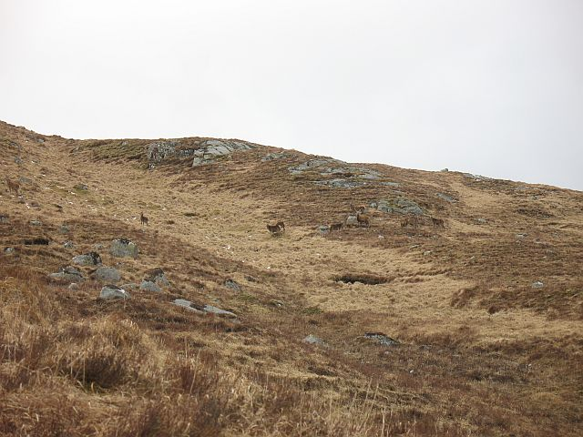 Slopes of An Grianan