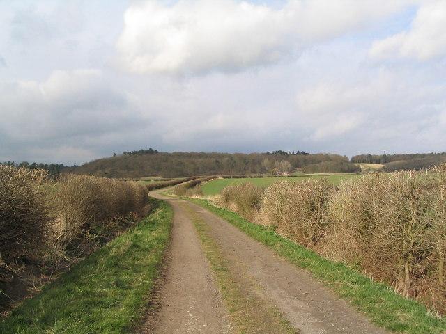 Wossock Lane