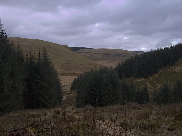 View across Cwm Tywi