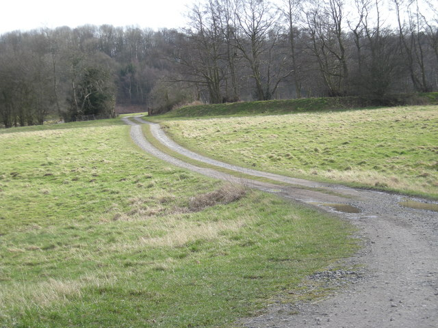 Drive to Sham Castle