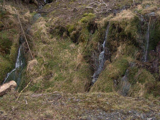 Dripping hillside