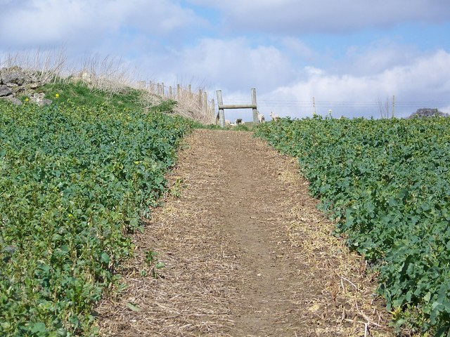 Footpath to Vicarage Barn