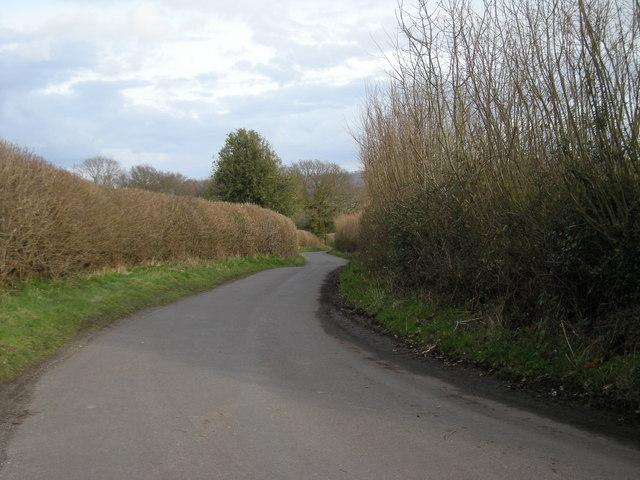 Twisting lane