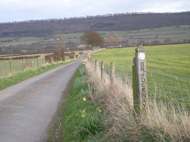 Bridleway to The Gippols