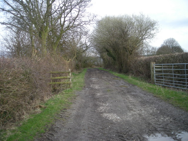 Bridleway without Sheep