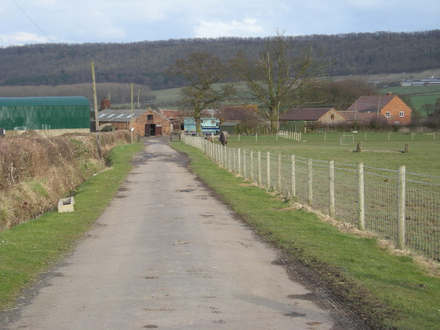 Driveway to The Leasowes