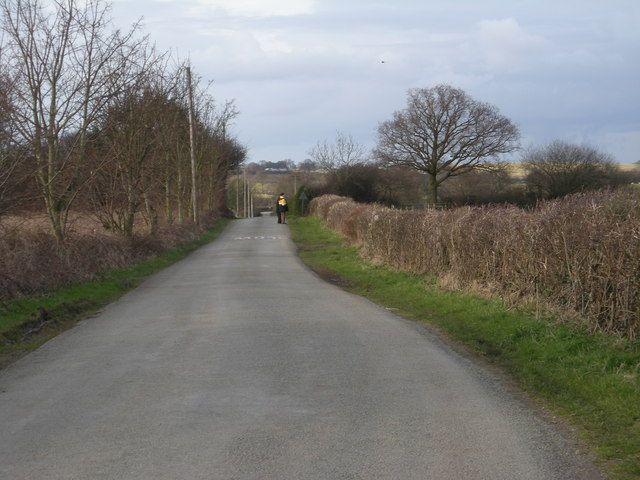 Lane to New Hall