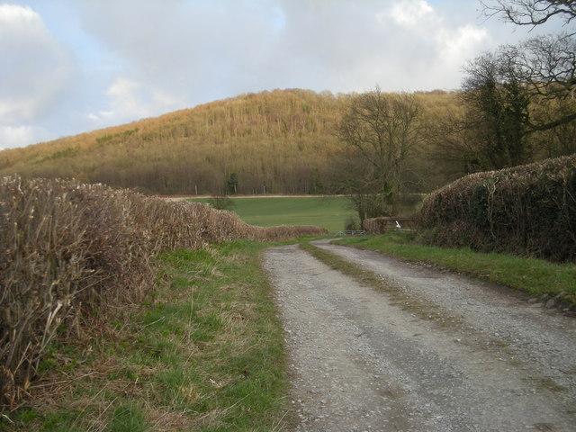 Path to Wenlock Edge