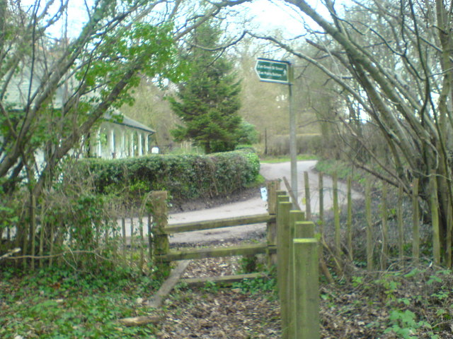 Road and footpath by Newyears Wood