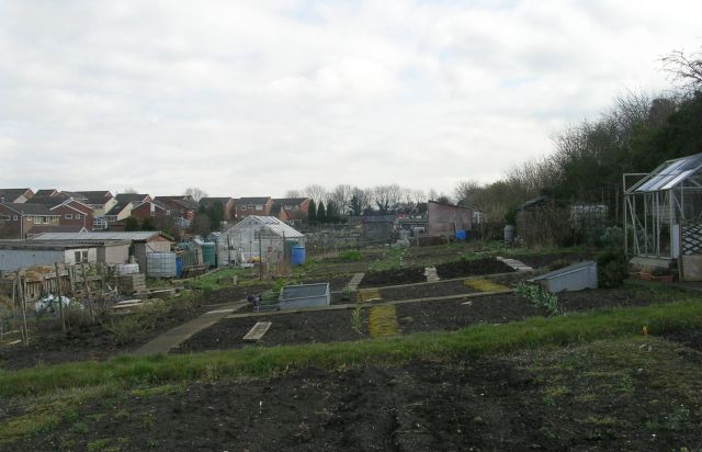 Allotments - Gibson Lane, Kippax