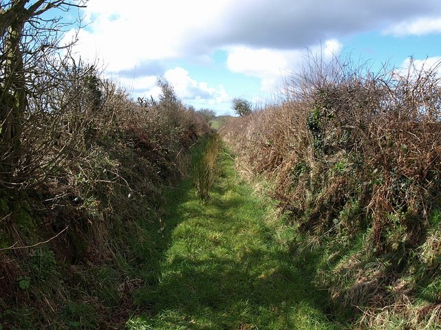 Field access track, Brendon