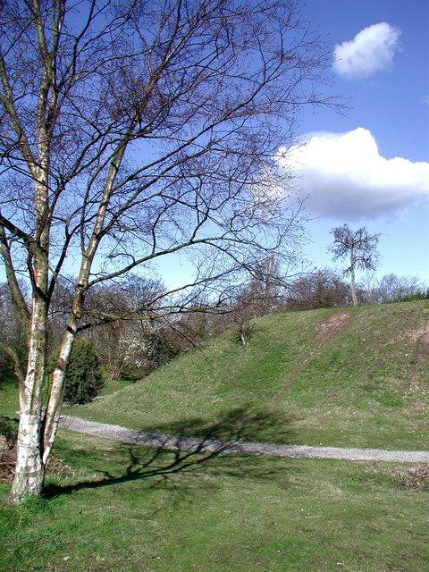 Peel Hill Castle, Thorne