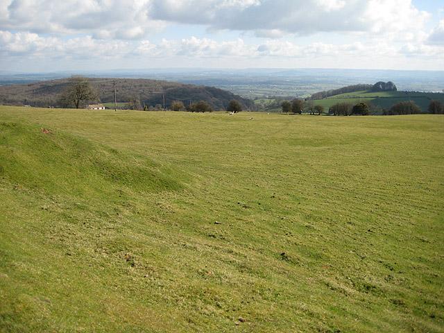 Hillside view towards Chestnuts Hill