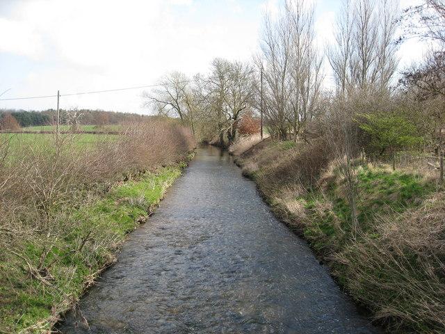 River Meden at Perlethorpe